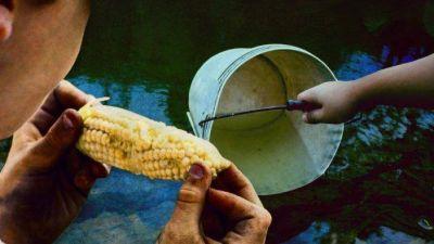 En el conurbano bonaerense 3 de cada 10 hogares no tienen agua potable