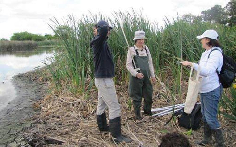 Investigarán los humedales de la cuenca Matanza – Riachuelo