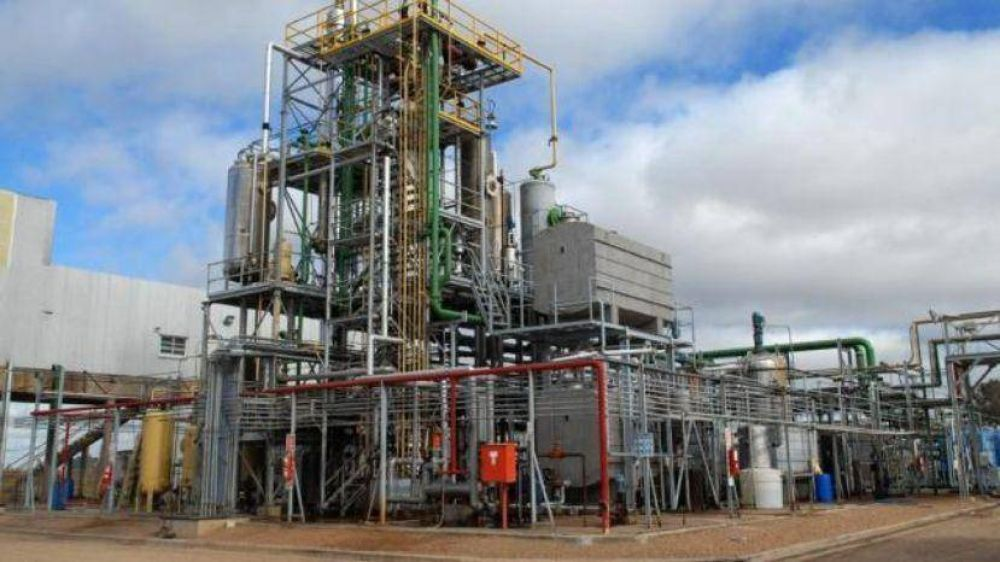 Biodiesel: fallo favorable en EE.UU.
