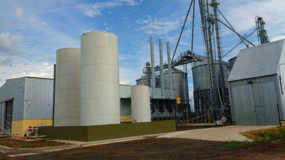 El Gobierno mejora precios del biodiesel para evitar cierre de plantas