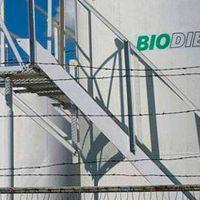 Autorizaron otro aumento del biodiesel