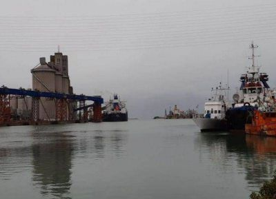 El tiro por la culata: las exportadoras demandan a las autoridades municipales