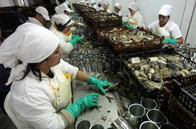 """Conservas de pescado: """"Estamos trabajando al 30% de la capacidad de otras épocas"""""""