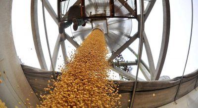 Por la disparada inflacionaria, recibidores de granos van a un modelo de paritarias semestrales con seguimiento permanente