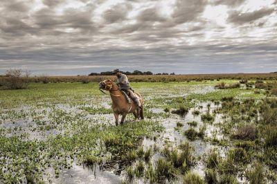 En cuatro años, se triplicaron las áreas protegidas en la Argentina