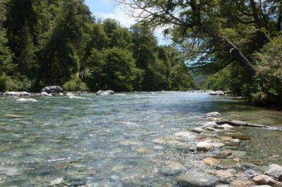 Pedido de informe sobre proyecto Hidroeléctrico en arroyo Los Repollos de El Bolsón