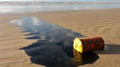 Misterioso derrame de crudo está matando a las tortugas de Brasil