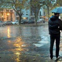 """Cayeron más de 200 milímetros en La Plata, """"la tormenta más importante desde 2013"""""""