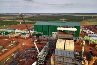 La Nación autorizó a la planta de biomasa de Corrientes a vender energía a Cammesa