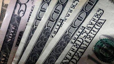 """Voló el """"libre"""" y regresa el """"puré"""": ya se gana 11% directo con el dólar"""
