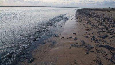 Retiran más de 200 toneladas de residuos de petróleo en playas brasileñas