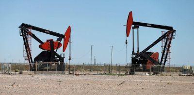 """Descubren un nuevo yacimiento de petróleo en Malargüe: """"Es crudo de muy buena calidad"""""""