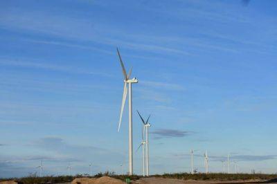 Trabajadores suspendidos por contratista en los parques eólicos de Chubut seguirán cobrando el salario