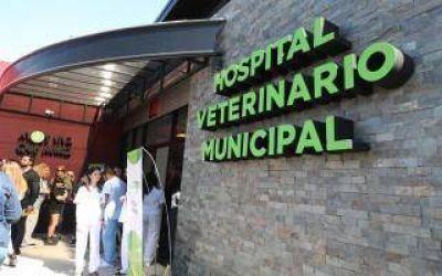 Avellaneda: Inauguraron Hospital Veterinario más grande del país