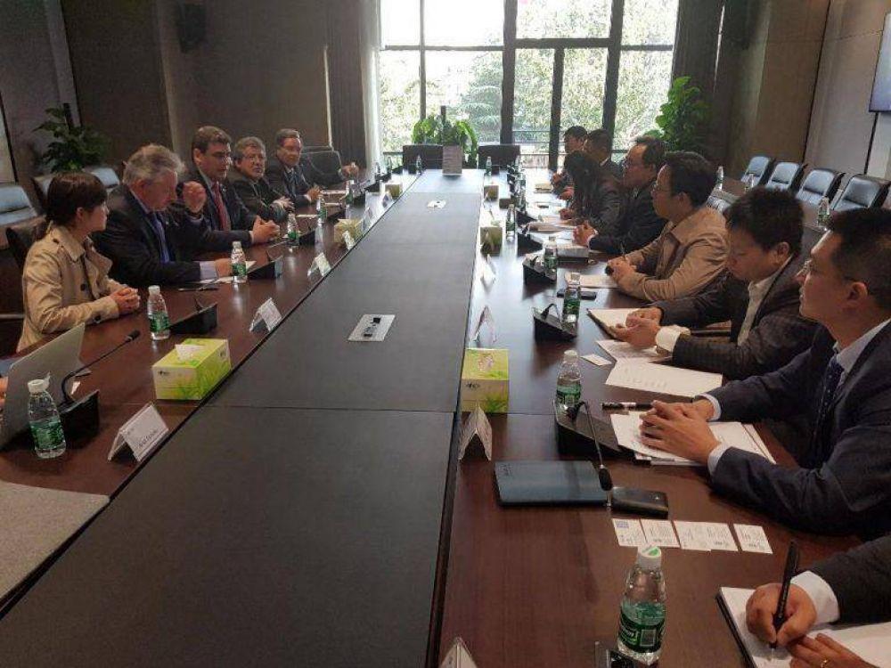 Power China está interesado en proyectos de energía renovable para Mendoza