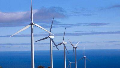 Por el cepo frenan inversión en parques eólicos en Chubut