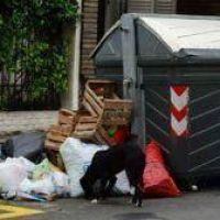 Por la basura, la municipalidad ingresó un amparo contra los sindicatos