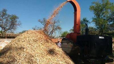 Trelew generará energía renovable con aprovechamiento de biomasa