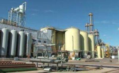 El Gobierno no prorrogará la Ley de Biocombustibles por dos años