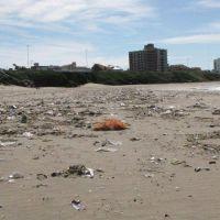 Foro Costero Ambiental ofrece apoyo a los balnearios para contar con «playas limpias»