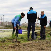 Avellaneda: recuperan el ambiente en el predio de la Reserva Saladita Norte