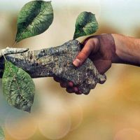 Econer, el invento para generar energías renovables que rompió con las estructuras y es más accesible