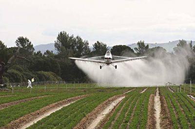 Detienen al dueño de un campo, al ingeniero agrónomo y a un aplicador por fumigar a 90 metros de dos escuelas