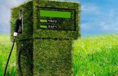 Biocombustibles, una fuente de energía renovable en constante evolución