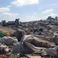 Junín: son recicladores, trabajan gratis en el basural y están expuestos a infecciones y accidentes