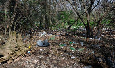 Quilmes: el 83% de los residuos en la selva marginal es de plástico