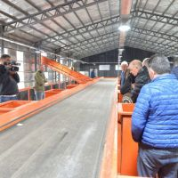 Planta que invita a ganar conciencia de lo importante de reciclar Silvano Rosso