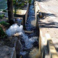 Miles de litros de agua potable se pierden en la vereda del Liceo