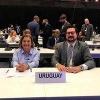 En cinco años Uruguay reducirá las emisiones de gases de efecto invernadero a la mitad