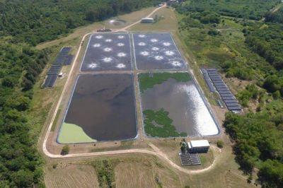 Gualeguaychú: la planta de tratamientos de efluentes trabaja al 100 por ciento