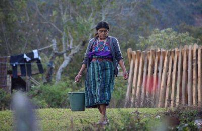 Más de un tercio de los países en desarrollo sufren desnutrición y sobrepeso