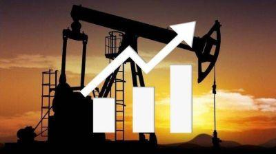 Vaca Muerta para todos: cómo acceder a rentas petroleras en dólares