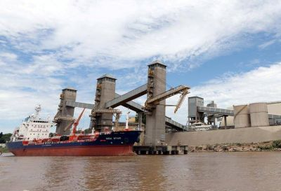 Este año, el caudal del río Paraná fue el más bajo de las últimas cuatro décadas
