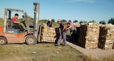Recreo recuperó 230 toneladas de residuos secos en nueve meses