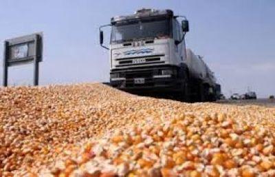Chaco actualizó el cuadro tarifario para el transporte de granos