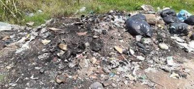 Crecen las quejas por la falta de recolección de residuos