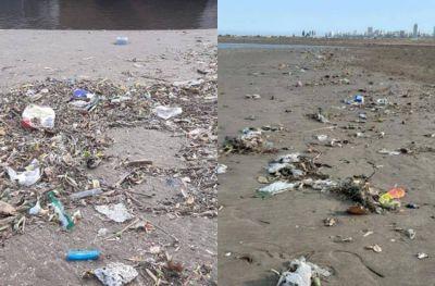 Marplatenses juntaron más de 5 mil colillas de cigarrillos de la playa de Constitución