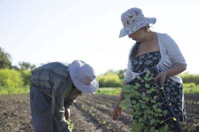 """Unión de Trabajadores de la Tierra: """"Somos el campo que produce alimentos"""""""
