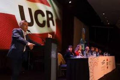 """""""Esperamos una respuesta oficial, como mínimo"""": ultimátum de la UCR al Gobierno por Evo Morales"""