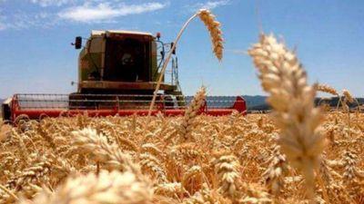 Trabajadores rurales también recibirán el aumento de $4.000 dispuesto por decreto