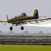 Una alternativa a los agrotóxicos: fumigación ecológica