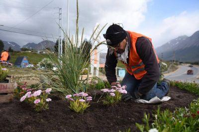 Realizan limpieza, parquización y puesta en valor de avenida Héroes de Malvinas