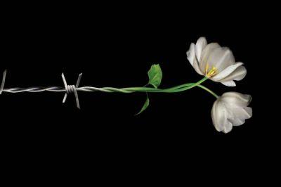 Se conmemora hoy el día de recordación del holocausto