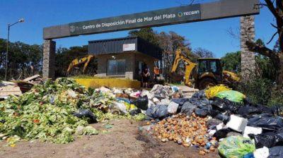 Proponen que Desarrollo Social lleve a cabo el Programa Social de Gestión de Residuos Sólidos Urbanos