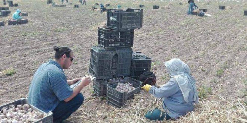 Trabajo esclavo: advierten que en campos de Mendoza esconden peones con tranqueras cerradas o los hacen trabajar de noche, para esquivar controles del Estado