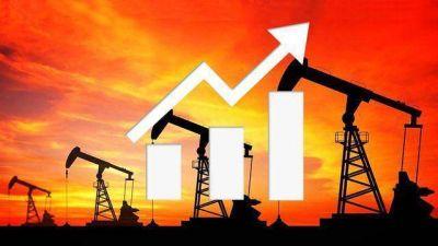 Vaca Muerta: tras la salida de Schlumberger, buscan reactivar inversiones de Chevron, Shell y Exxon